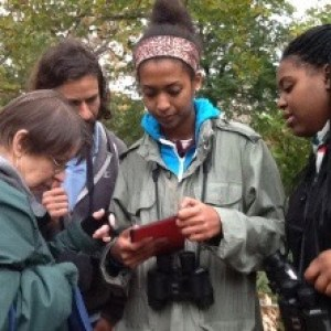 Fordham University & the Wildlife Conservation Society, Funded by Noyce