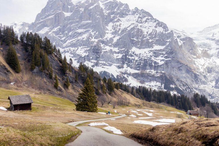 First, Grindelwald, 3 amazing days in Interlaken, Switzerland 4