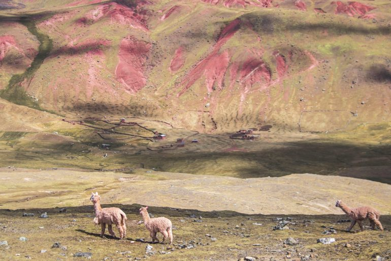 Red Valley & Rainbow Mountain, Peru travel next holiday destination