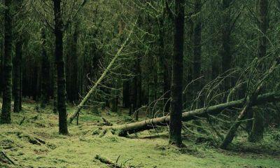 Ardennes : qui était le photographe Éric Guglielmi, inspiré par Arthur Rimbaud, mort à 51 ans