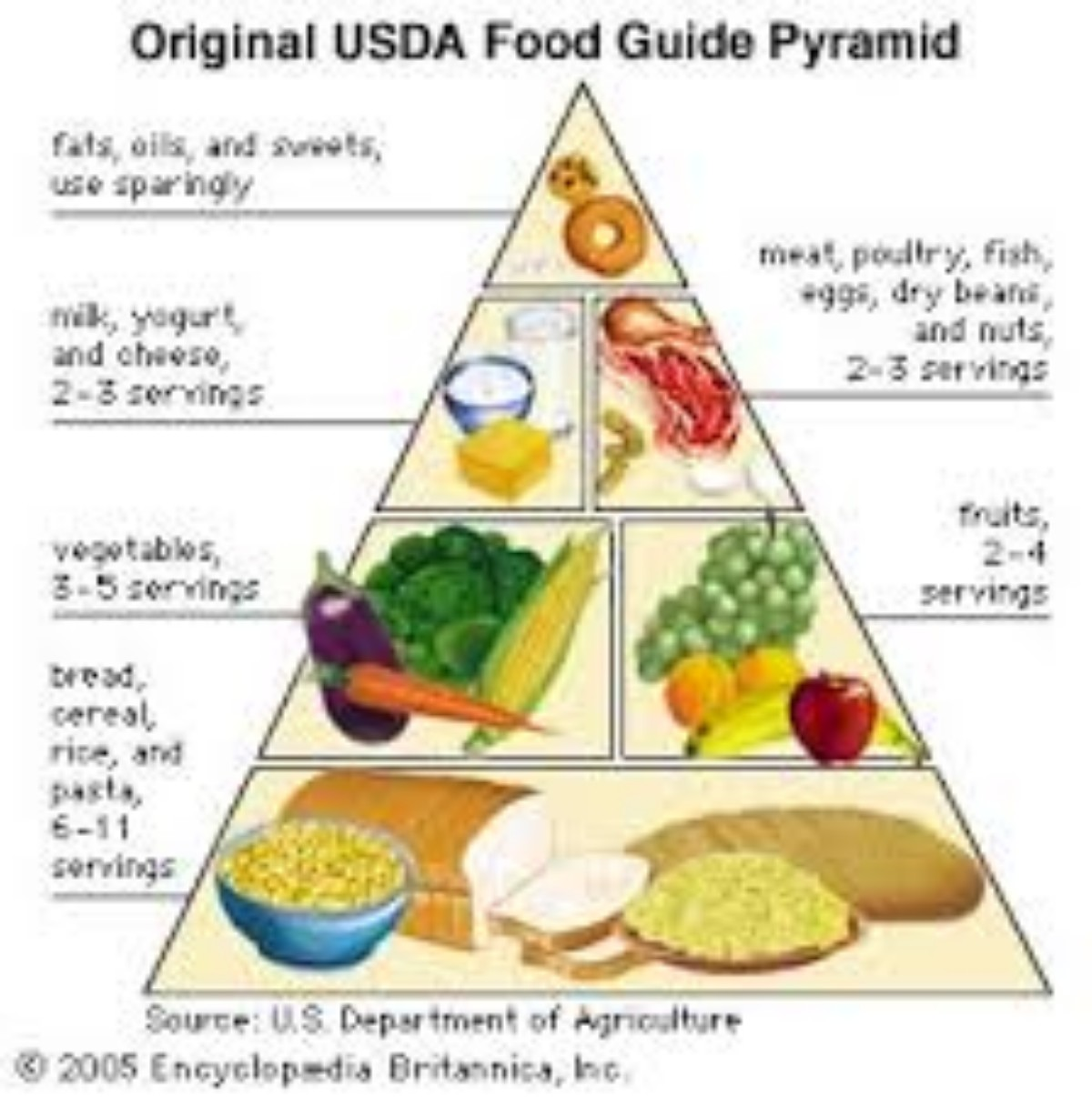 A History Of The Development Of The Food Pyramid And