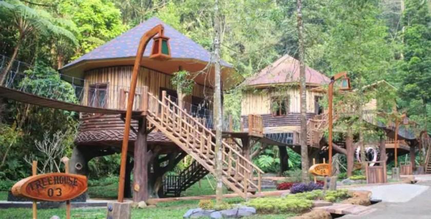 Tree House Taman Safari Bogor