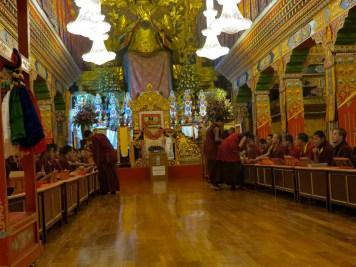 Himachal, Travel, Tour, Travel Diaries, bir billing, shirab ling