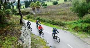 E-Bikes - wenig sicherheitsrelevante Probleme