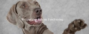 fundraisingjpg