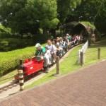 ミニSLや豆自動車に乗れる葛飾区新宿交通公園