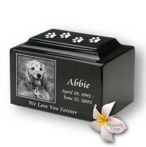 Pet Cremation Costs? Don't worry about it