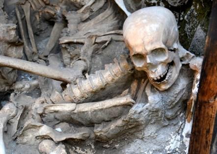 herculaneum skull small