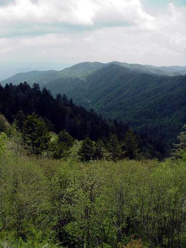 Newfound Gap, Great Smoky Mountains.  May 19, 2001.