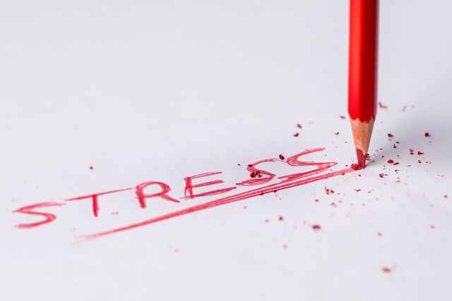 Seniors, Stress and What to Do About It