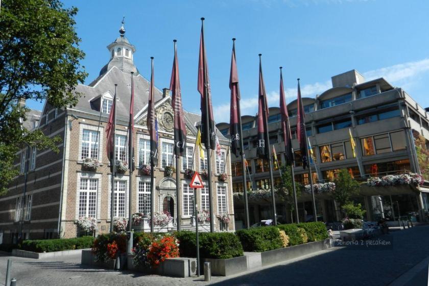 Ratusz w Hasselt