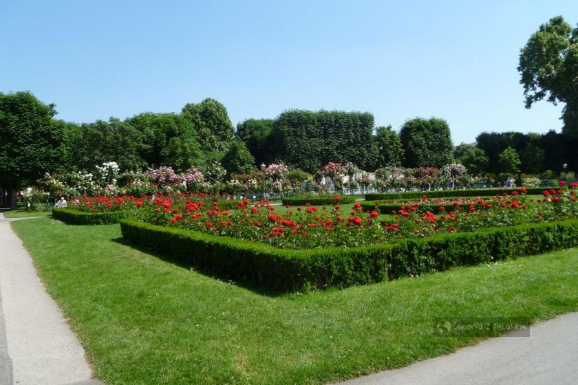 Park Volksgarten w Wiedniu w Austrii