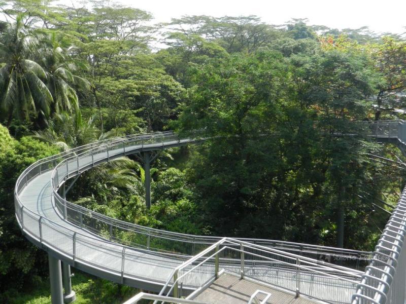 Singapur – spacer wśród koron drzew i wyspa Sentosa