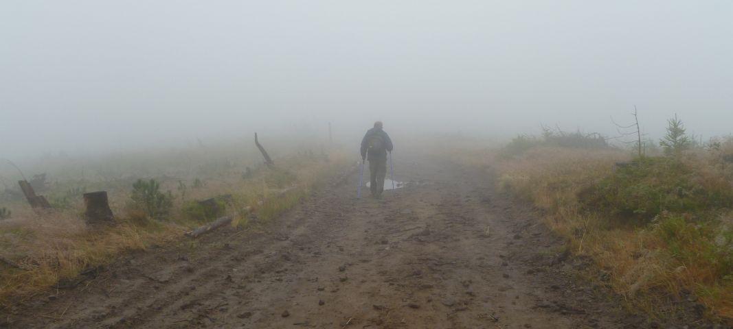 Polska - mgła