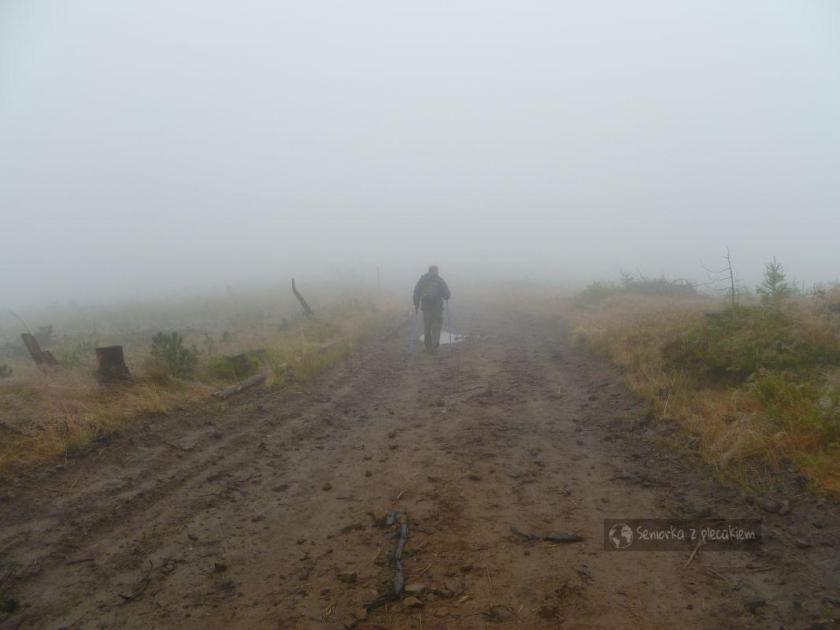 Mgła na szlaku