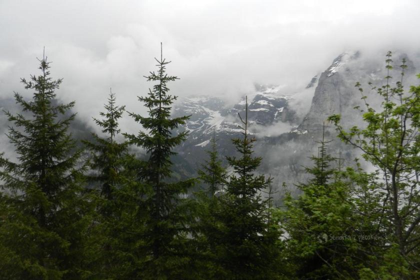 Grutschalp w Szwajcarii