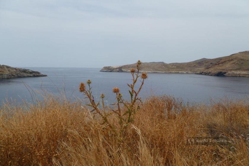 Zatoka na Serifos