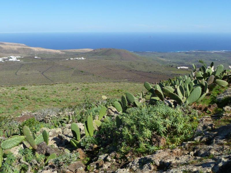 Lanzarote – zajrzeć do wulkanu