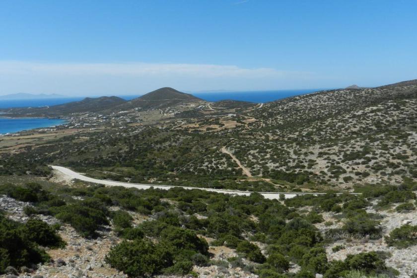 Antyparos