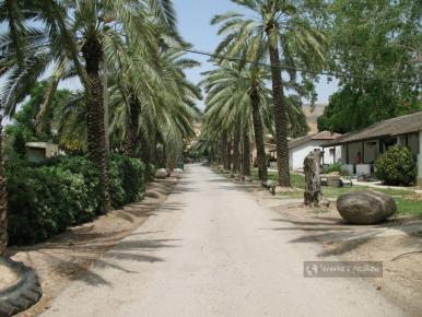 Ulica w kibucu Ein-Gev w Izraelu