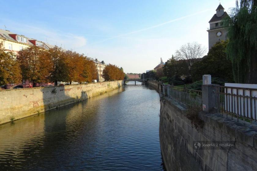 Rzeka Morava