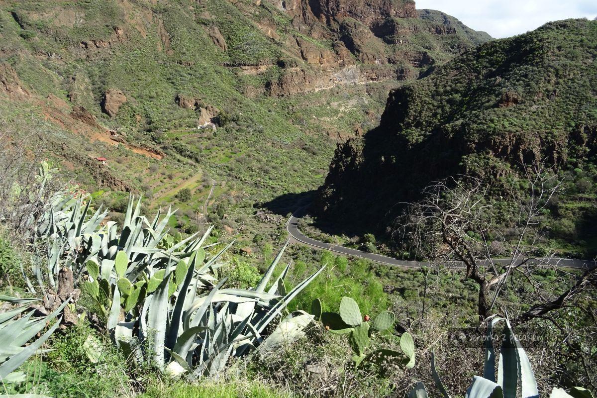Gran Canaria - Guayadeque
