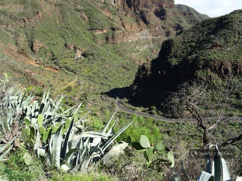 Gran Canaria – wstęp