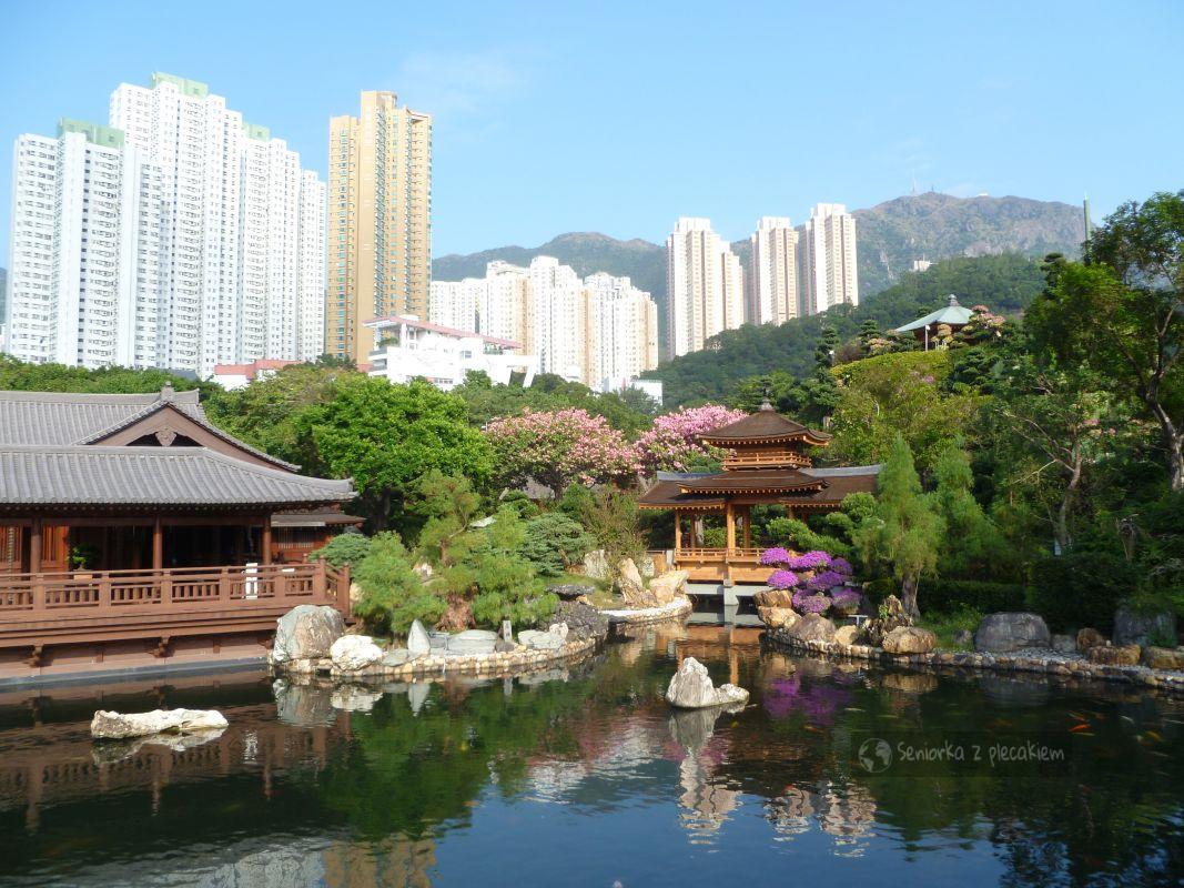 Hong Kong: ogród Nan Lian i klasztor Chi Lin Nunnery