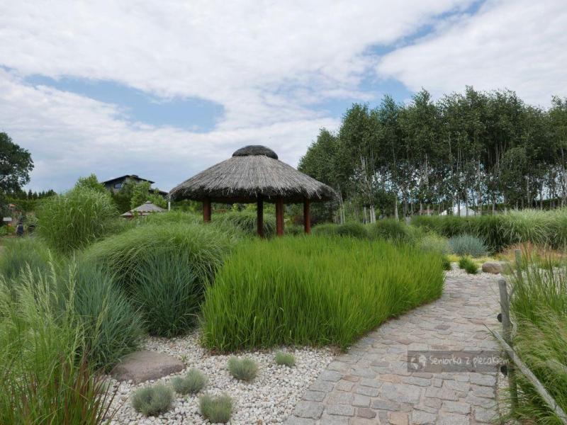 Ogrody Kapias na każdą porę roku