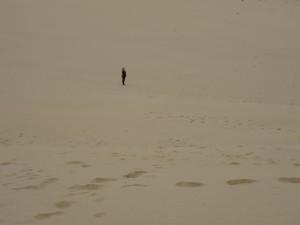 Dune Cape reinga