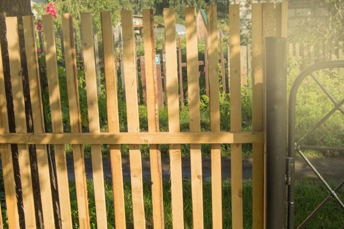 Seniors Lifestyle Magazine Talks To Garden Thefts