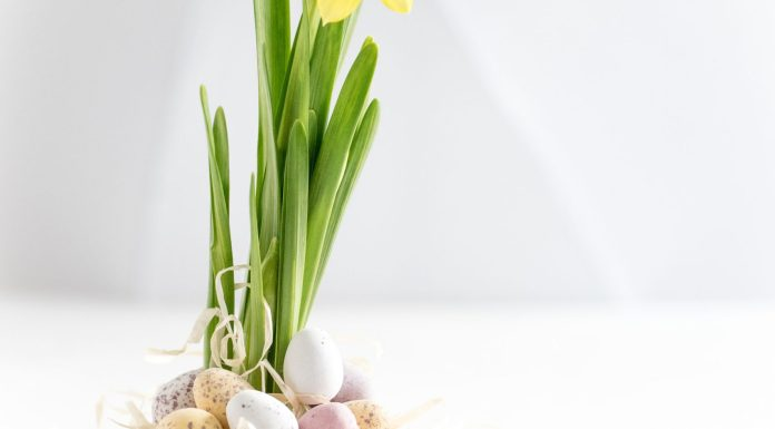 Seniors Lifestyle Magazine Talks To Easter Activities For Seniors With Dementia