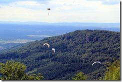 4 hang gliders