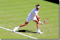 Federer 6-29-2015 10-19-05 PM 1574x1051