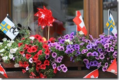 flowers and flags on Swiss National Day 8-1-2015 4-21-08 AM 5472x3648