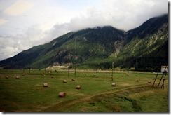 scenery on train back to Klosters from SM 8-1-2015 5-53-45 AM 5472x3648