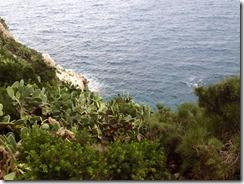 coast (2)