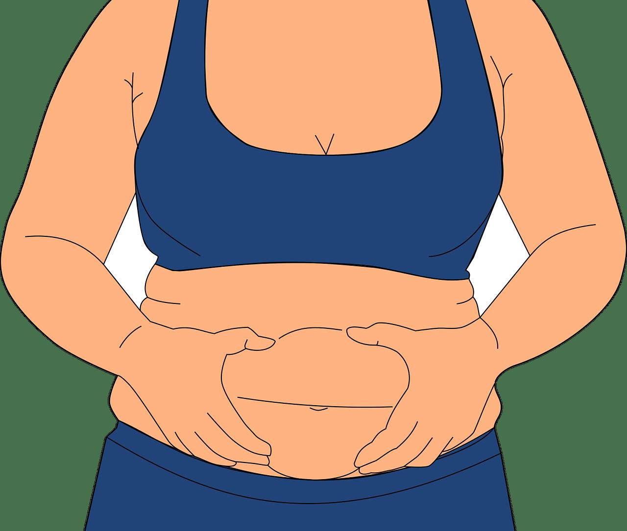 obesity, fatness, love handles