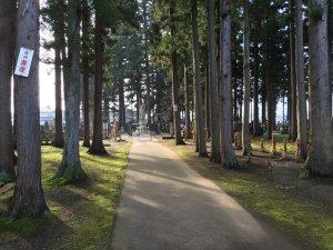 林泉寺の墓地