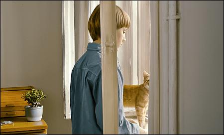 'Das merkwürdige Kätzchen' von Ramon Zürcher © looknow