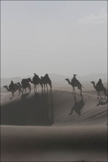Queen of the Desert von Werner Herzog © 2013 QOTD 1