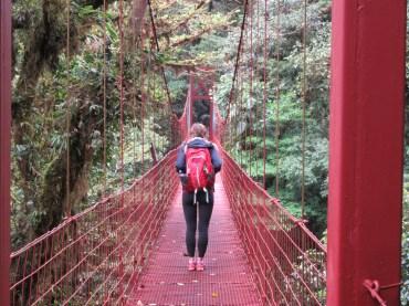 Trotting across a hanging bridge