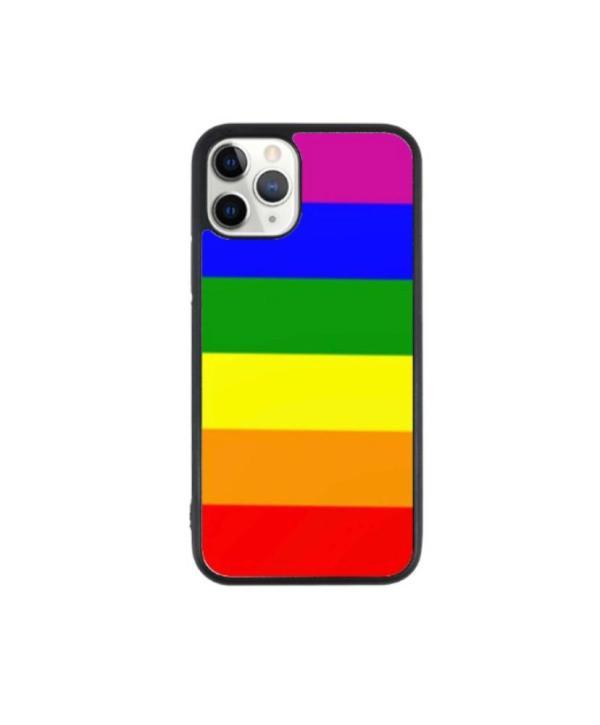 LGBTQ Flag Case