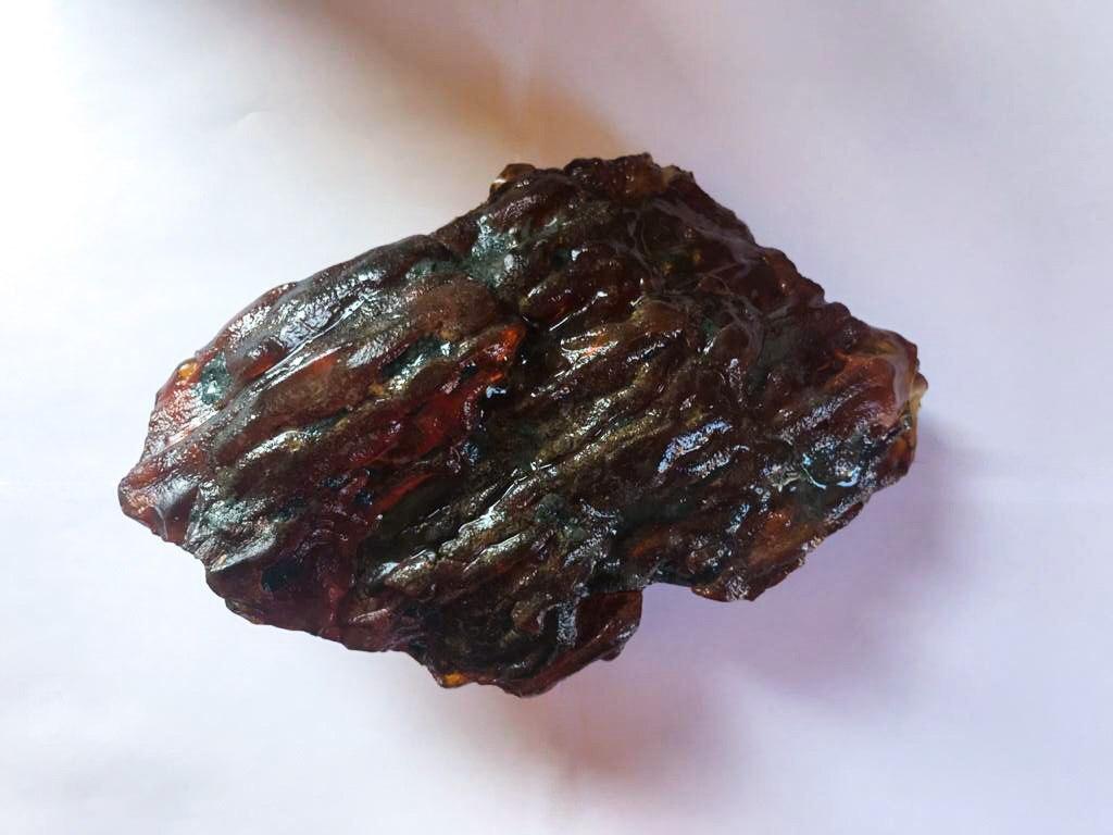 Найденный под Калининградом янтарный самородок назвали «Флотским»