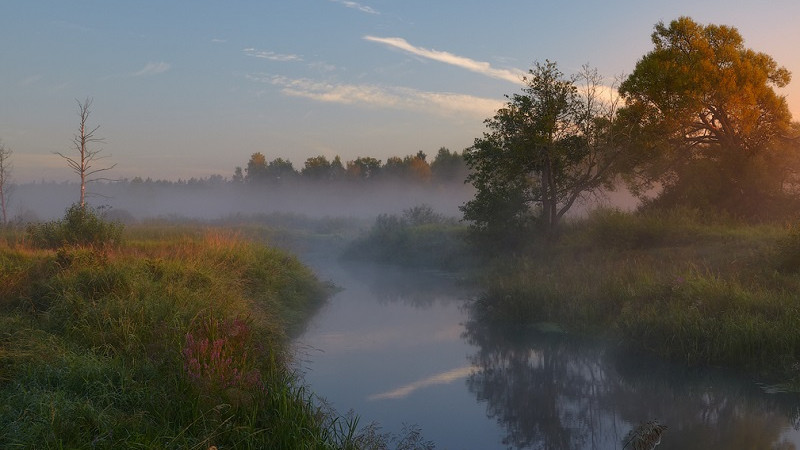 В Дубне откроется экомарафон «Реки России. Волга-2020»