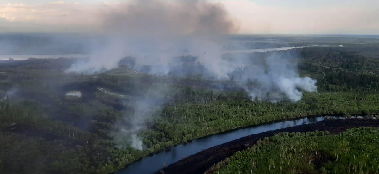 Рядом с камчатским селом загорелся лес