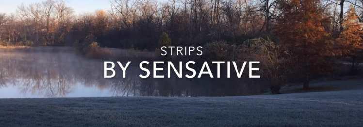 sensative strips review