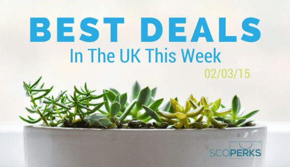 A Succulent with The Text 'Best Deals In The UK This Week 02/03/15'