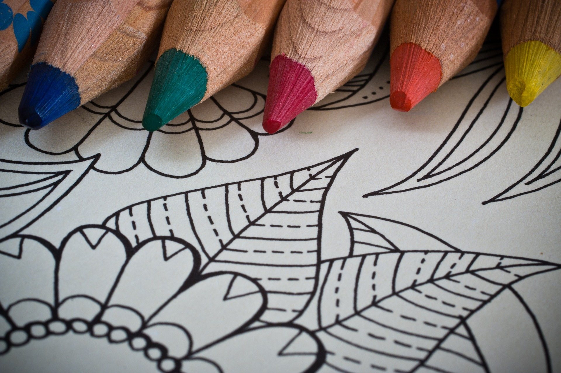 adult-colouring-books