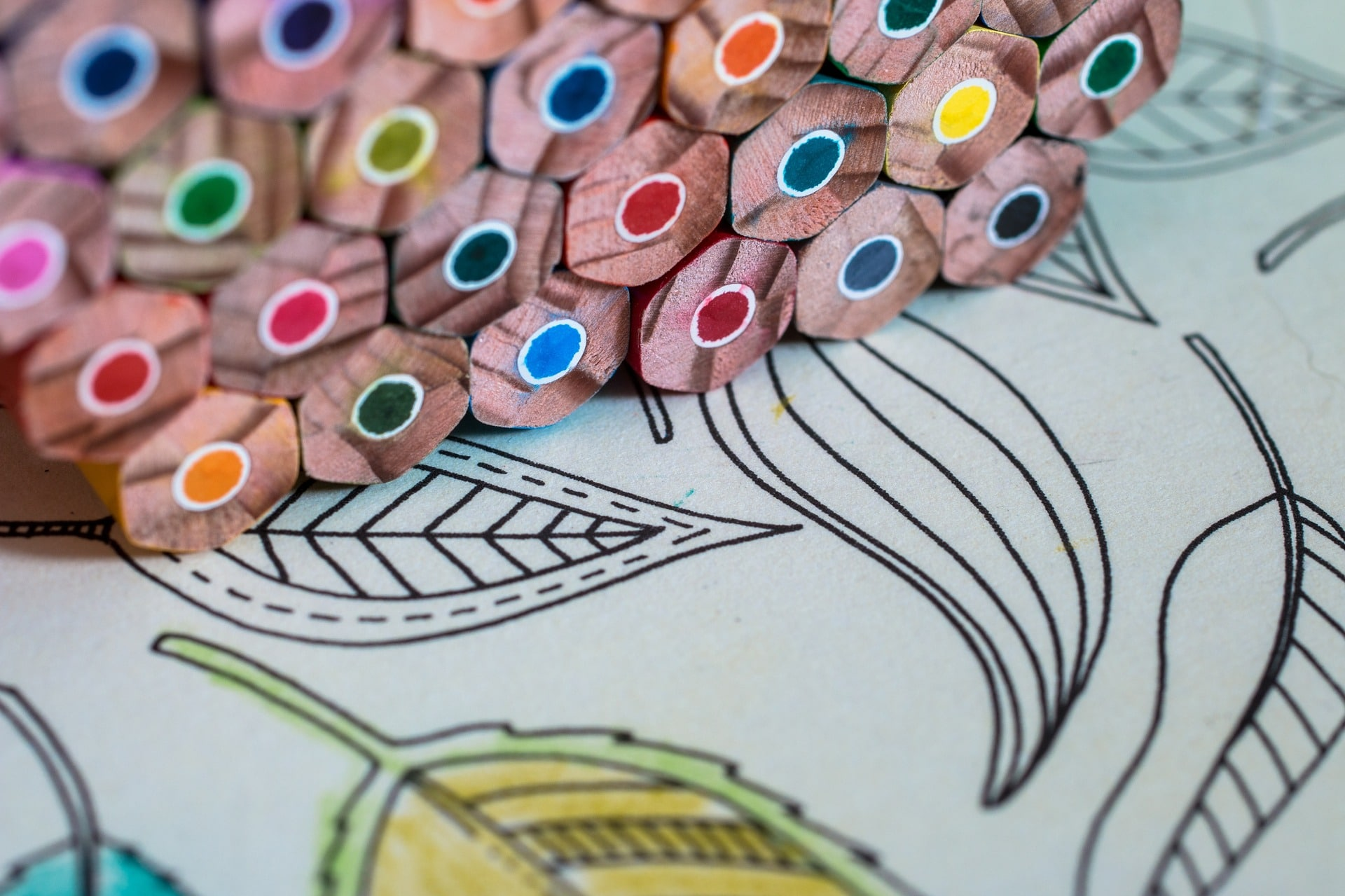 back-to-colouring-books